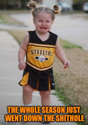 Steelers fans be like | THE WHOLE SEASON JUST WENT DOWN THE SHITHOLE | image tagged in steelers fans be like | made w/ Imgflip meme maker
