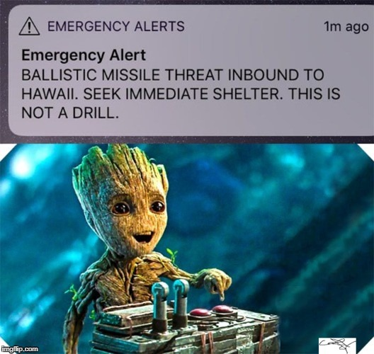 image tagged in hawaii missile alert groot | made w/ Imgflip meme maker