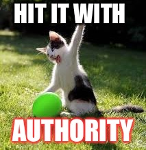HIT IT WITH AUTHORITY | made w/ Imgflip meme maker