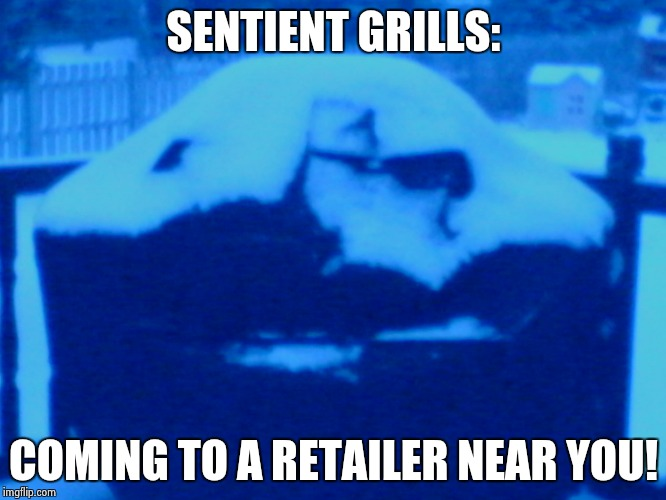 Prepare for the BBQ invasion | SENTIENT GRILLS: COMING TO A RETAILER NEAR YOU! | image tagged in skeptical grill | made w/ Imgflip meme maker