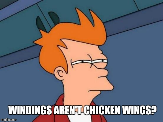 Futurama Fry Meme | WINDINGS AREN'T CHICKEN WINGS? | image tagged in memes,futurama fry | made w/ Imgflip meme maker