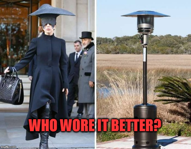 Who wore it better? | WHO WORE IT BETTER? | image tagged in who wore it better,fugly | made w/ Imgflip meme maker