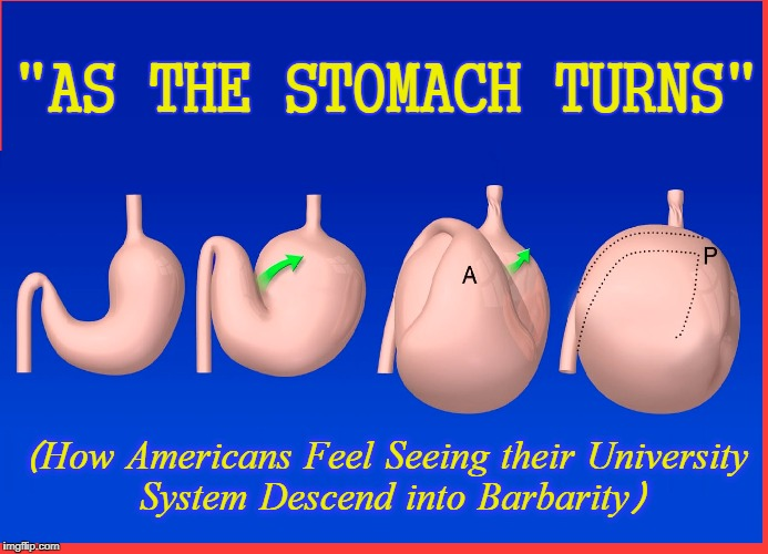 "The Decline of Western Civilization happening now at your local university | ""AS THE STOMACH TURNS"" (How Americans Feel Seeing their University System Descend into Barbarity) 