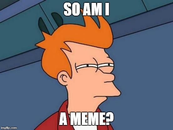 Futurama Fry Meme | SO AM I A MEME? | image tagged in memes,futurama fry | made w/ Imgflip meme maker