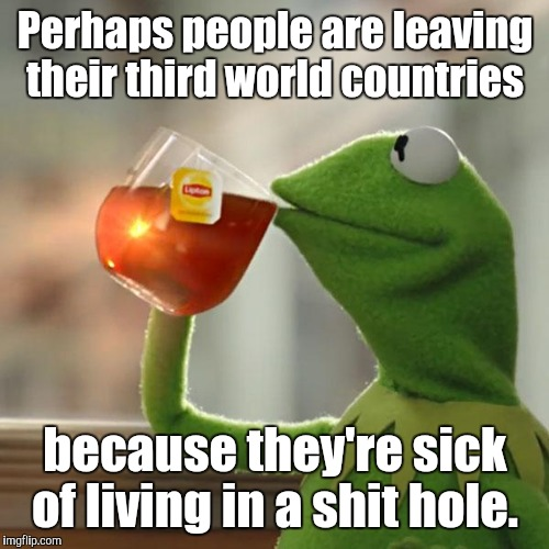 But Thats None Of My Business Meme | Perhaps people are leaving their third world countries because they're sick of living in a shit hole. | image tagged in memes,but thats none of my business,kermit the frog | made w/ Imgflip meme maker