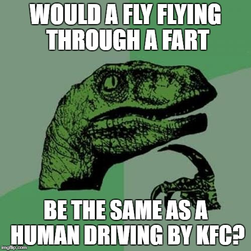 Philosoraptor Meme | WOULD A FLY FLYING THROUGH A FART BE THE SAME AS A HUMAN DRIVING BY KFC? | image tagged in memes,philosoraptor | made w/ Imgflip meme maker