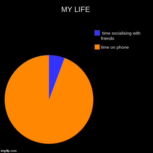 MY LIFE | time on phone,  time socialising with friends | image tagged in funny,pie charts | made w/ Imgflip pie chart maker