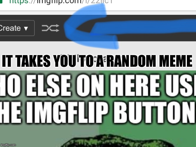 I Personally never use the imgflip button. | IT TAKES YOU TO A RANDOM MEME | image tagged in imgflip,information,button,funny,philosoraptor,meme | made w/ Imgflip meme maker