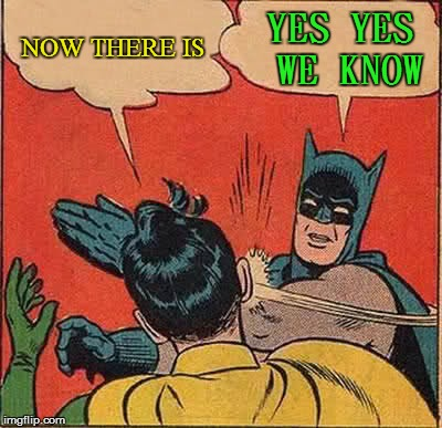 Batman Slapping Robin Meme | NOW THERE IS YES YES WE KNOW | image tagged in memes,batman slapping robin | made w/ Imgflip meme maker