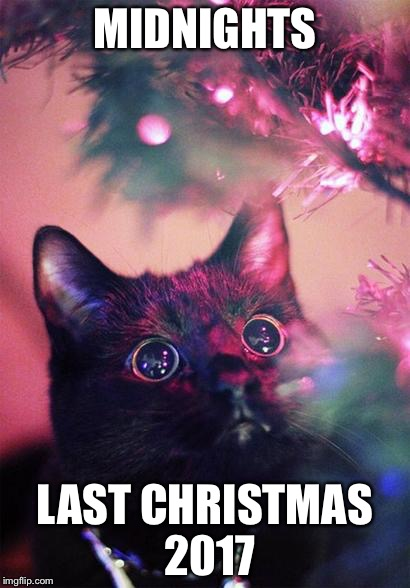 Christmas Cat | MIDNIGHTS LAST CHRISTMAS 2017 | image tagged in christmas cat | made w/ Imgflip meme maker