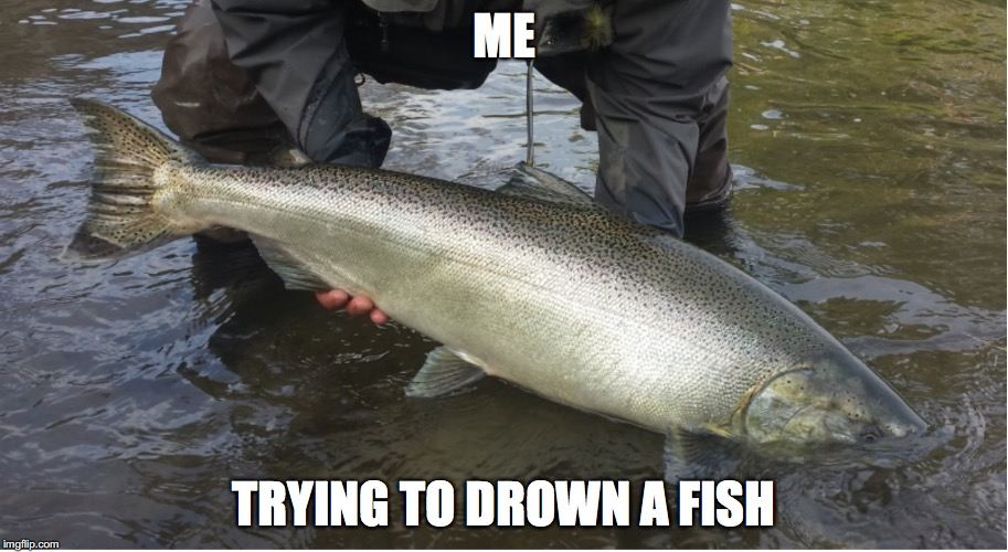 ME TRYING TO DROWN A FISH | image tagged in salmon,drowning,memes | made w/ Imgflip meme maker