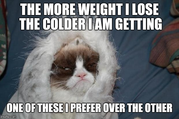 Cold grumpy cat  | THE MORE WEIGHT I LOSE THE COLDER I AM GETTING ONE OF THESE I PREFER OVER THE OTHER | image tagged in cold grumpy cat | made w/ Imgflip meme maker