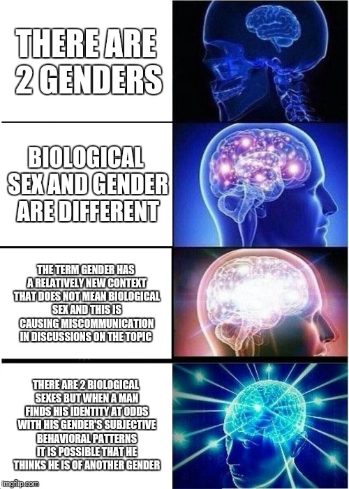Expanding Brain Meme | THERE ARE 2 GENDERS BIOLOGICAL SEX AND GENDER ARE DIFFERENT THE TERM GENDER HAS A RELATIVELY NEW CONTEXT THAT DOES NOT MEAN BIOLOGICAL SEX A | image tagged in memes,expanding brain | made w/ Imgflip meme maker