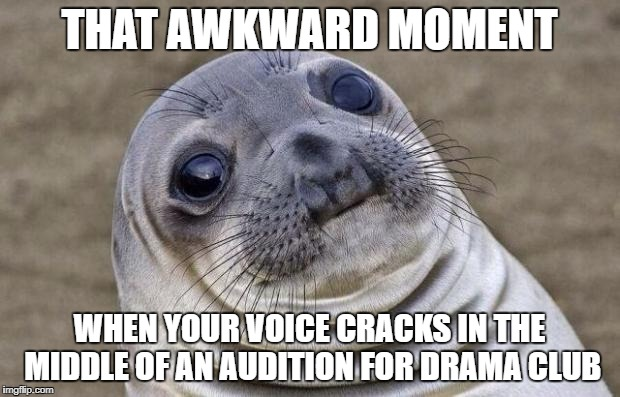Awkward Moment Sealion Meme | THAT AWKWARD MOMENT WHEN YOUR VOICE CRACKS IN THE MIDDLE OF AN AUDITION FOR DRAMA CLUB | image tagged in memes,awkward moment sealion | made w/ Imgflip meme maker