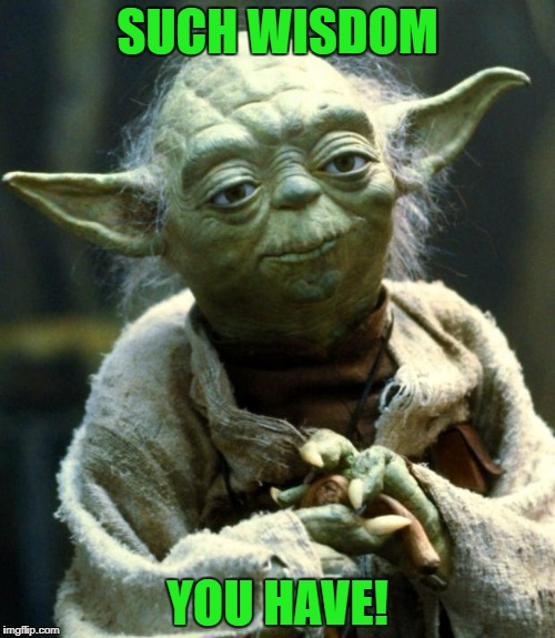 Star Wars Yoda Meme | SUCH WISDOM YOU HAVE! | image tagged in memes,star wars yoda | made w/ Imgflip meme maker