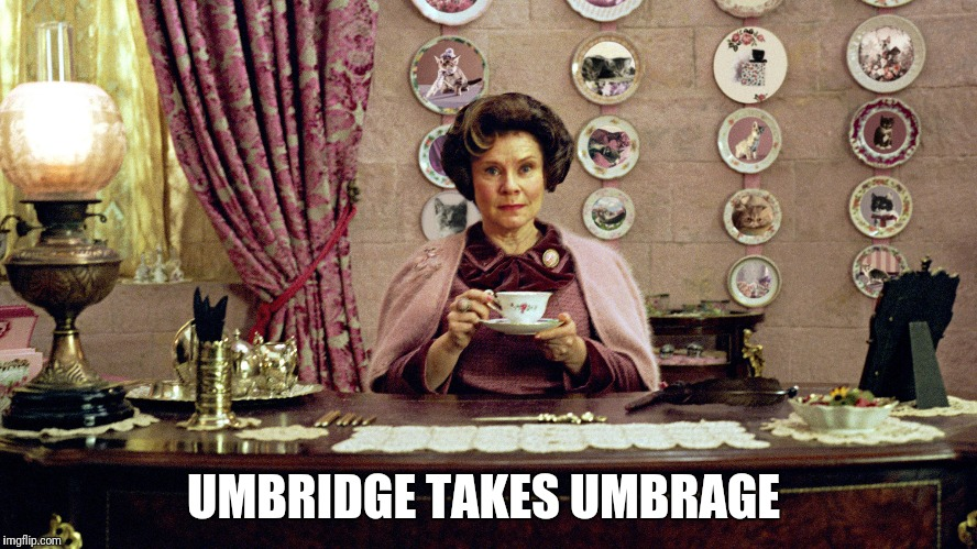 UMBRIDGE TAKES UMBRAGE | image tagged in umbridge | made w/ Imgflip meme maker