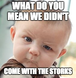Skeptical Baby | WHAT DO YOU MEAN WE DIDN'T COME WITH THE STORKS | image tagged in memes,skeptical baby | made w/ Imgflip meme maker
