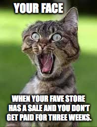 YOUR FACE WHEN YOUR FAVE STORE HAS A SALE AND YOU DON'T GET PAID FOR THREE WEEKS. | image tagged in sale cat | made w/ Imgflip meme maker