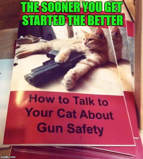 I don't know about you, but I feel much safer knowing this book is out there!!! | THE SOONER YOU GET STARTED THE BETTER | image tagged in gun safety,memes,cats,funny,guns,animals | made w/ Imgflip meme maker