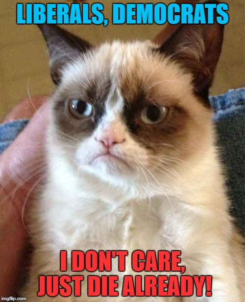 Grumpy Cat Meme | LIBERALS, DEMOCRATS I DON'T CARE, JUST DIE ALREADY! | image tagged in memes,grumpy cat | made w/ Imgflip meme maker