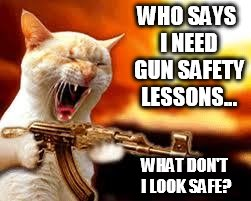 WHO SAYS I NEED GUN SAFETY LESSONS... WHAT DON'T I LOOK SAFE? | made w/ Imgflip meme maker