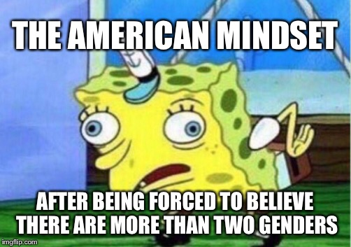 Mocking Spongebob Meme | THE AMERICAN MINDSET AFTER BEING FORCED TO BELIEVE THERE ARE MORE THAN TWO GENDERS | image tagged in memes,mocking spongebob | made w/ Imgflip meme maker