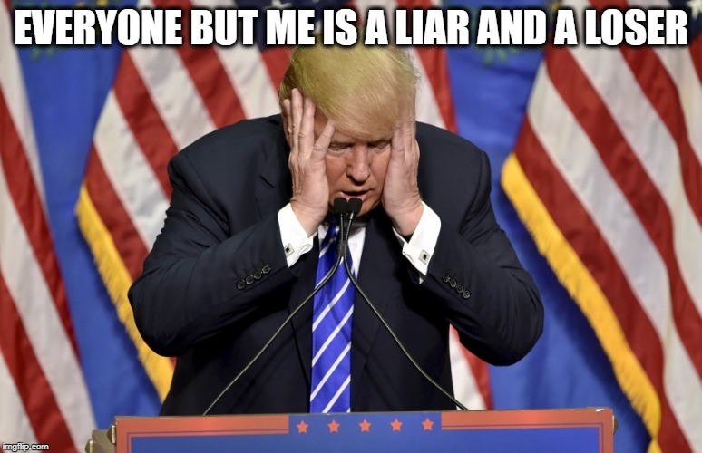 Cry baby Trump | EVERYONE BUT ME IS A LIAR AND A LOSER | image tagged in cry baby trump | made w/ Imgflip meme maker