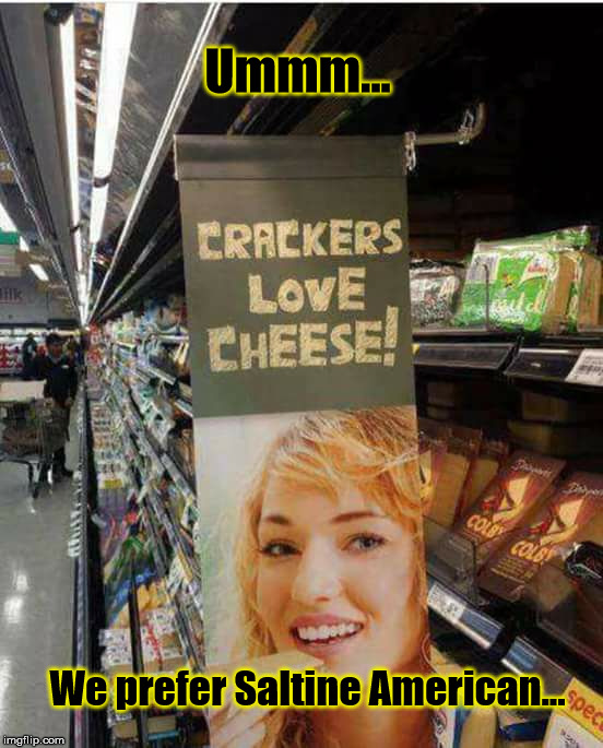 Saltine American |  Ummm... We prefer Saltine American... | image tagged in cheese | made w/ Imgflip meme maker