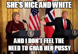 SHE'S NICE AND WHITE AND I DON'T FEEL THE NEED TO GRAB HER PUSSY | made w/ Imgflip meme maker