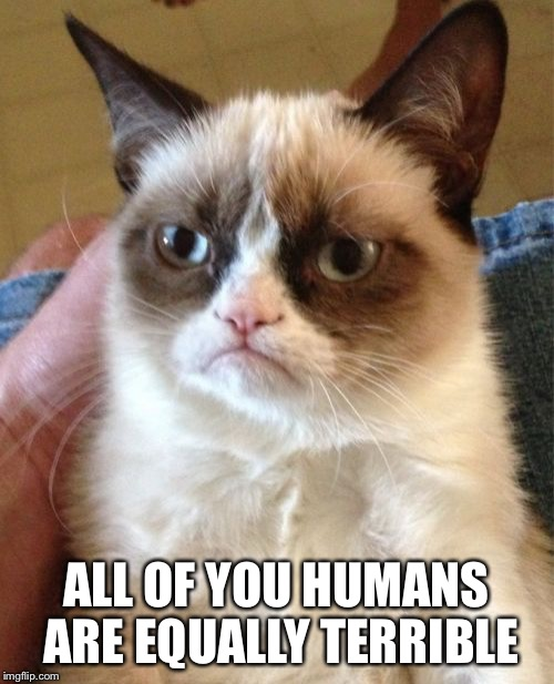 Grumpy Cat Meme | ALL OF YOU HUMANS ARE EQUALLY TERRIBLE | image tagged in memes,grumpy cat | made w/ Imgflip meme maker