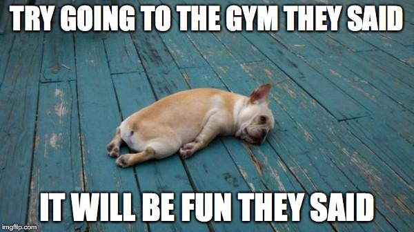 tired dog | TRY GOING TO THE GYM THEY SAID IT WILL BE FUN THEY SAID | image tagged in tired dog | made w/ Imgflip meme maker