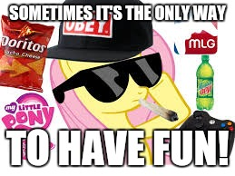 MLG Pony | SOMETIMES IT'S THE ONLY WAY TO HAVE FUN! | image tagged in mlg pony | made w/ Imgflip meme maker