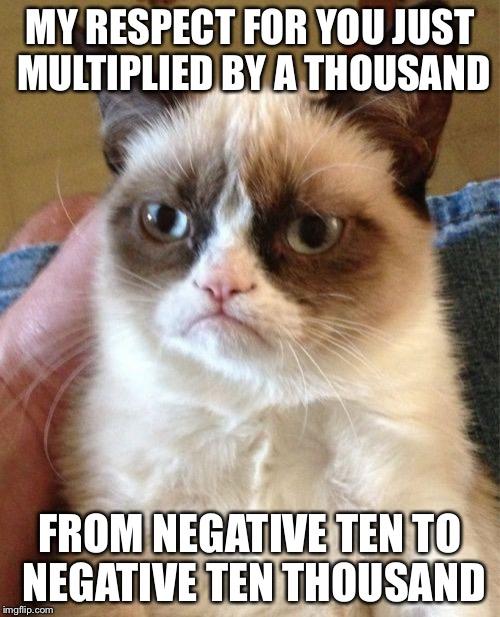 Grumpy Cat Meme | MY RESPECT FOR YOU JUST MULTIPLIED BY A THOUSAND FROM NEGATIVE TEN TO NEGATIVE TEN THOUSAND | image tagged in memes,grumpy cat | made w/ Imgflip meme maker
