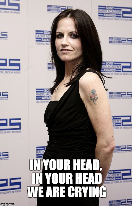 IN YOUR HEAD, IN YOUR HEAD WE ARE CRYING | image tagged in dolores o'riordan | made w/ Imgflip meme maker