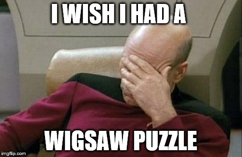 Captain Picard Facepalm Meme | I WISH I HAD A WIGSAW PUZZLE | image tagged in memes,captain picard facepalm | made w/ Imgflip meme maker
