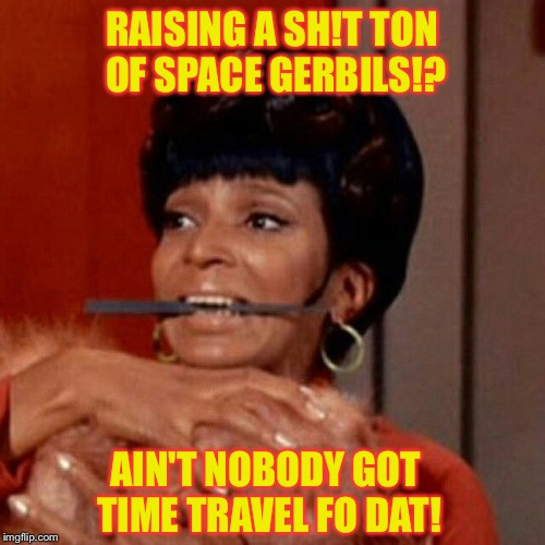 Tribble Trouble | RAISING A SH!T TON OF SPACE GERBILS!? AIN'T NOBODY GOT TIME TRAVEL FO DAT! | image tagged in space gerbils,tribbles,star trek,aint nobody got time for that,pets | made w/ Imgflip meme maker