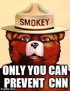 Smokey The Bear | ONLY YOU CAN PREVENT  CNN | image tagged in smokey the bear | made w/ Imgflip meme maker