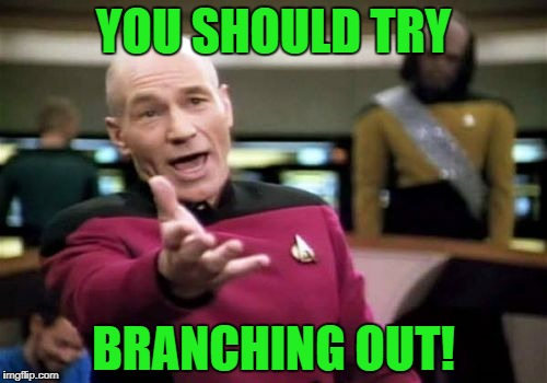 Picard Wtf Meme | YOU SHOULD TRY BRANCHING OUT! | image tagged in memes,picard wtf | made w/ Imgflip meme maker