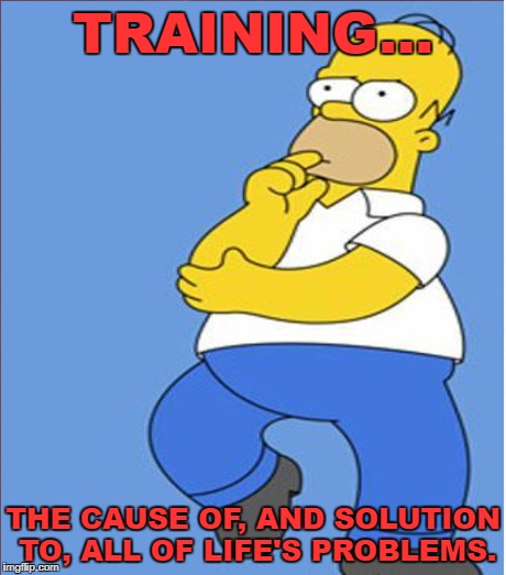 TRAINING... THE CAUSE OF, AND SOLUTION TO, ALL OF LIFE'S PROBLEMS. | made w/ Imgflip meme maker