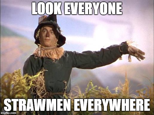 Strawman | LOOK EVERYONE STRAWMEN EVERYWHERE | image tagged in strawman | made w/ Imgflip meme maker