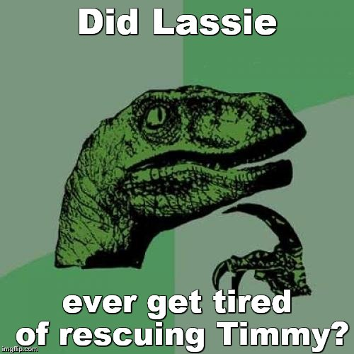 Philosoraptor Meme | Did Lassie ever get tired of rescuing Timmy? | image tagged in memes,philosoraptor | made w/ Imgflip meme maker