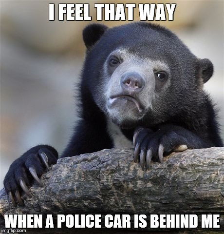 Confession Bear Meme | I FEEL THAT WAY WHEN A POLICE CAR IS BEHIND ME | image tagged in memes,confession bear | made w/ Imgflip meme maker