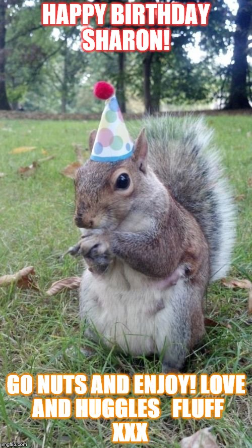 Super Birthday Squirrel Meme | HAPPY BIRTHDAY SHARON! GO NUTS AND ENJOY! LOVE AND HUGGLES   FLUFF   XXX | image tagged in memes,super birthday squirrel | made w/ Imgflip meme maker