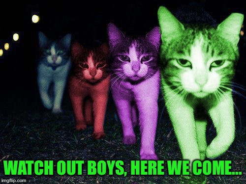 Wrong Neighborhood RayCats | WATCH OUT BOYS, HERE WE COME... | image tagged in wrong neighborhood raycats | made w/ Imgflip meme maker