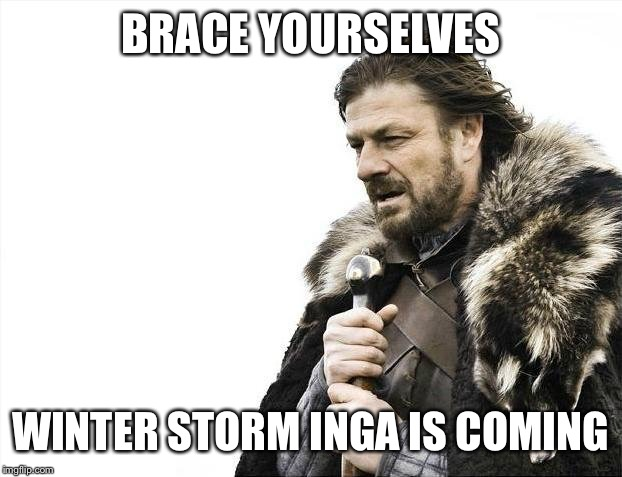 Brace Yourselves X is Coming Meme | BRACE YOURSELVES WINTER STORM INGA IS COMING | image tagged in memes,brace yourselves x is coming | made w/ Imgflip meme maker
