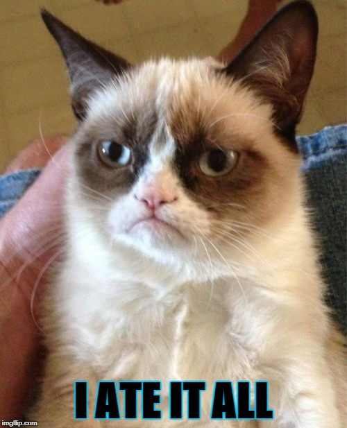 Grumpy Cat Meme | I ATE IT ALL | image tagged in memes,grumpy cat | made w/ Imgflip meme maker