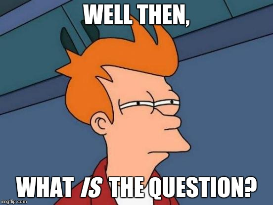 Futurama Fry Meme | WELL THEN, WHAT        THE QUESTION? IS | image tagged in memes,futurama fry | made w/ Imgflip meme maker