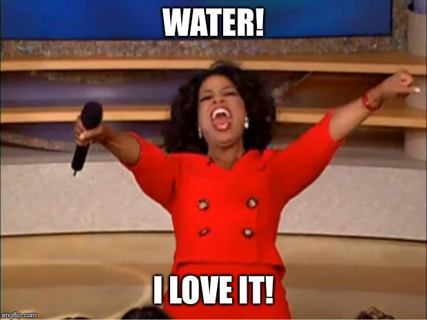 Oprah You Get A Meme | WATER! I LOVE IT! | image tagged in memes,oprah you get a | made w/ Imgflip meme maker