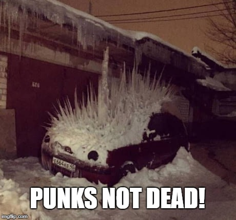 Punks nod dead | PUNKS NOT DEAD! | image tagged in punk,music,funny,meme,car,ice | made w/ Imgflip meme maker