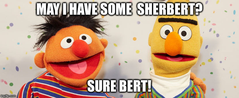 Frozen Treat humour | MAY I HAVE SOME  SHERBERT? SURE BERT! | image tagged in humor,ernie and bert,humour | made w/ Imgflip meme maker